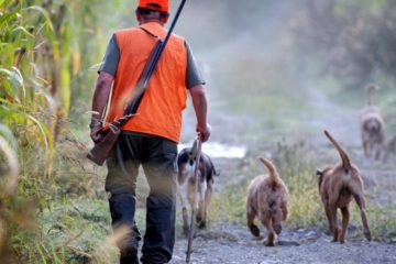 Chasse - Chasseur (1)