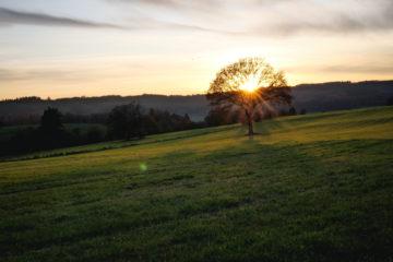 Haute Ardenne - Belgique - Trekking et Voyage-54
