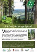 foret_brochure